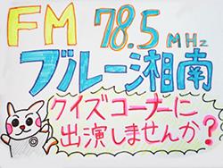 横須賀カルト・クイズ